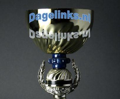 Dagelinks.nl wint prijs